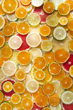 The colors of citrus fruits Royalty Free Stock Photography