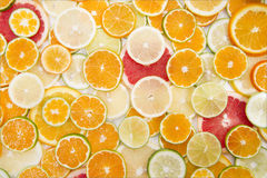 The colors of citrus fruits Royalty Free Stock Photos