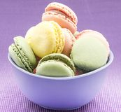 Colors cookies Stock Photos