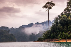 Colors of dusk, Khao Sok National Park. Colors of dusk over Cheow Lan Lake, Khao Sok National Park in southern Thailand Stock Photo
