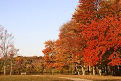 Colors of Fall. Scenic view of Belmont Lake State Park in the Autumn Royalty Free Stock Images