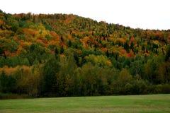 colors fall Στοκ φωτογραφία με δικαίωμα ελεύθερης χρήσης