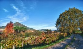 Colors of Fall in Lucca, Tuscany Stock Photography