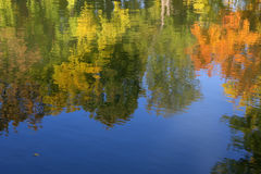 Colors of the fall reflection Royalty Free Stock Image