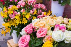 Colors in the flower market Royalty Free Stock Image