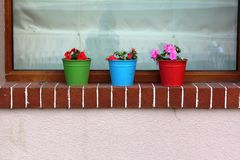 colors flower pots Royalty Free Stock Photo