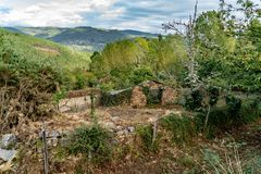 Colors of the forest in autumns. In Golan abandoned town of Puebla de Brollon in Lugo, Galicia royalty free stock photo