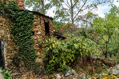 Colors of the forest in autumns. In Golan abandoned town of Puebla de Brollon in Lugo, Galicia stock image