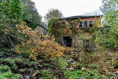 Colors of the forest in autumns. In Golan abandoned town of Puebla de Brollon in Lugo, Galicia royalty free stock photos