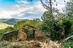 Colors of the forest in autumns. In Golan abandoned town of Puebla de Brollon in Lugo, Galicia stock images