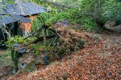 Colors of the forest in autumns. In Golan abandoned town of Puebla de Brollon in Lugo, Galicia stock photography
