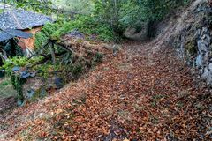 Colors of the forest in autumns. In Golan abandoned town of Puebla de Brollon in Lugo, Galicia royalty free stock photography