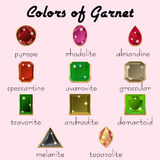 Colors of Garnet in different cuts. Kinds of mineral Garnet in crystals with different types of cuts in realistic shapes in natural tints of different colors Royalty Free Stock Photos