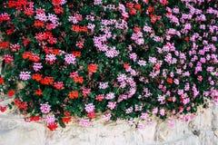 colors of Jerusalem stock images