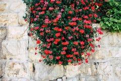 colors of Jerusalem stock photography
