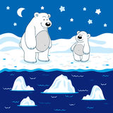 Colors for kids: white (polar bears) Royalty Free Stock Images