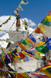 Colors of Ladakh, Stock Images