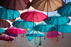 Colors of life Stock Image