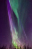 Colors of Light. Northern lights display in Alaska, April 2014 Royalty Free Stock Photo