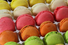 Colors macaroons Stock Image