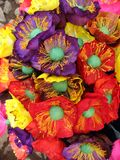 colors mexico Arkivbilder