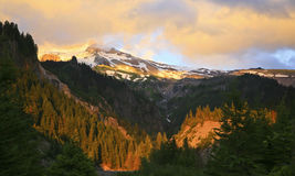 Colors of Mt. Hood at Sunset. Mt. Hood illuminated with the colors of the setting sun as seen from Running Water Creek Canyon near Ramona Falls Stock Images