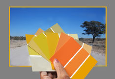 Colors of Namibia Stock Photography