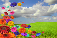 colors naturen Arkivbild