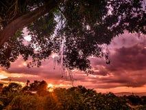 colors naturen fotografering för bildbyråer