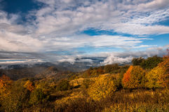 Free Colors Of Autumn In Georgia. The End Of October 2015. Stock Photos - 61169063