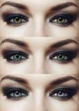 colors olika ögon Arkivfoton