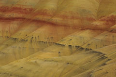 Colors of painted hills Royalty Free Stock Photography