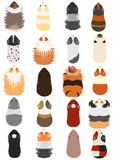 Colors and patterns of guinea pig. Variations of colors and patterns of guinea pig on white backgrounds stock illustration
