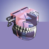 Colors prosthesis. Form of dental prosthesis with abstract colors Stock Photos
