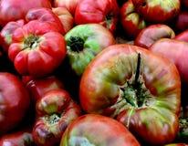colors röd tomatyellow för heirloom arkivfoto