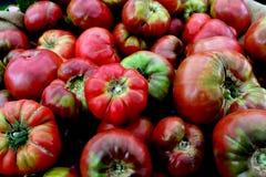 colors röd tomatyellow för heirloom Fotografering för Bildbyråer