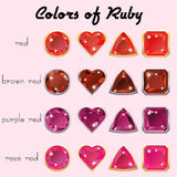 Colors of Ruby Stock Photography
