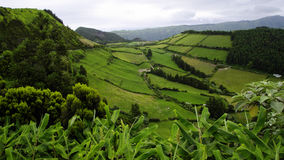 The colors of the Sao Miguel island. Azores Stock Photography