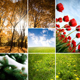 Colors of season Stock Images