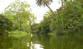 colors skoggreen dess berg som reflekterar vatten för spain fjädertrees Royaltyfria Bilder