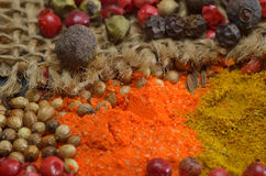 Colors spices composition Royalty Free Stock Photo