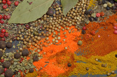 Colors spices composition Royalty Free Stock Image