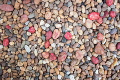 Colors stone. The colorful stone on the ground in the garden stock images