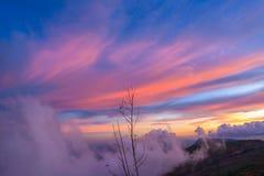 Colors at sunset Stock Photos