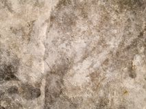 Colors and texture of concrete Stock Images