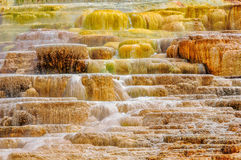 Colors of Yellowstone national park Royalty Free Stock Photo