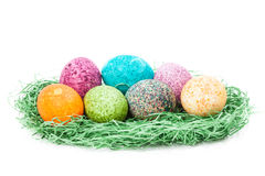 Colorulf easter eggs nest Stock Image