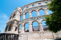 Coloseum Stock Photos