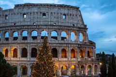 The Coloseum of Rome, Italy Royalty Free Stock Photos