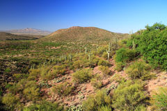 Colossal Cave Mountain Park View Stock Photos